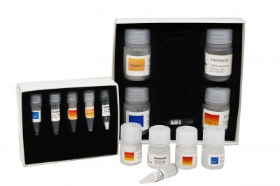 MicroGEM's forensicGEM Universal Kit provides users with a single tube solution for extracting DNA from a variety of forensically-relevant human samples.